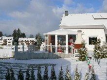 Wintergarten-ausserhalb-Muenchen_2